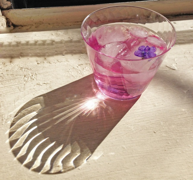 I'm not usually an advocate for plasticware but look how stunning!