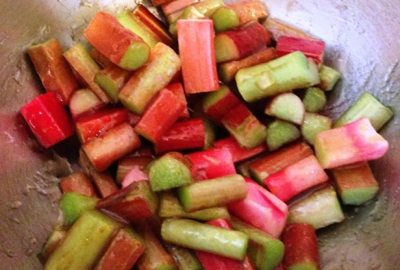 Honey Roasted Rhubarb Salad (2)