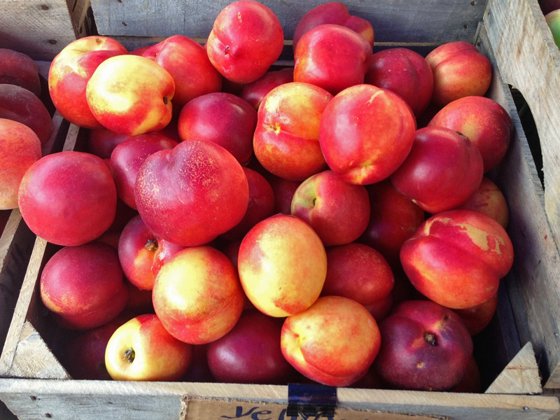 Nothing like fresh nectarines for dessert!