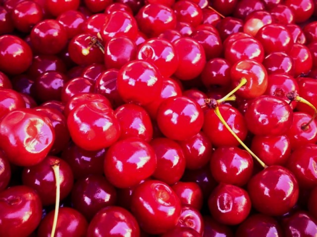Sour cherries are a bit softer, juicier and like the name SOUR. Perfect for pies and preserves