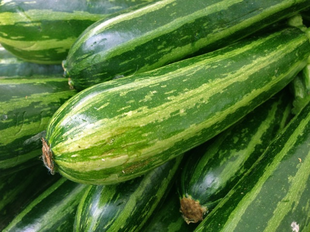 Beautifully stripped zucchini. Perfect for grilling