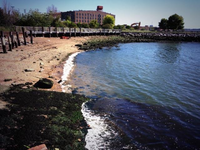 Red Hook Sea